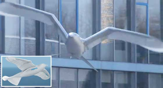 Festo SmartBird: Volando como un pájaro