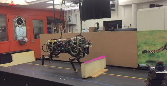 El Robot Guepardo del MIT capaz de localizar y saltar obstáculos