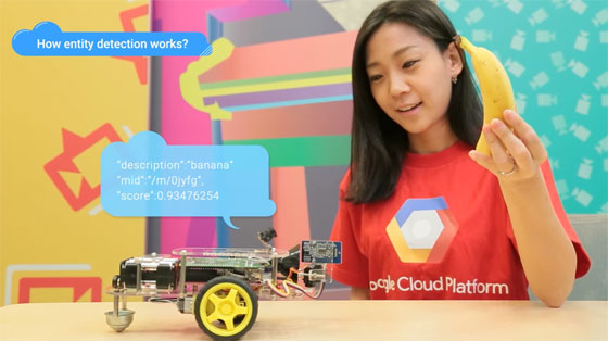 Google Cloud Vision con Raspberry Pi
