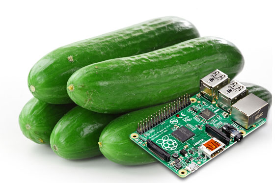 Clasificador de pepinos con Raspberry Pi usando Machine Learning