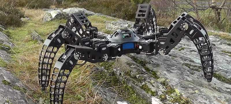 Robot araña MXPhoenix Hexapod