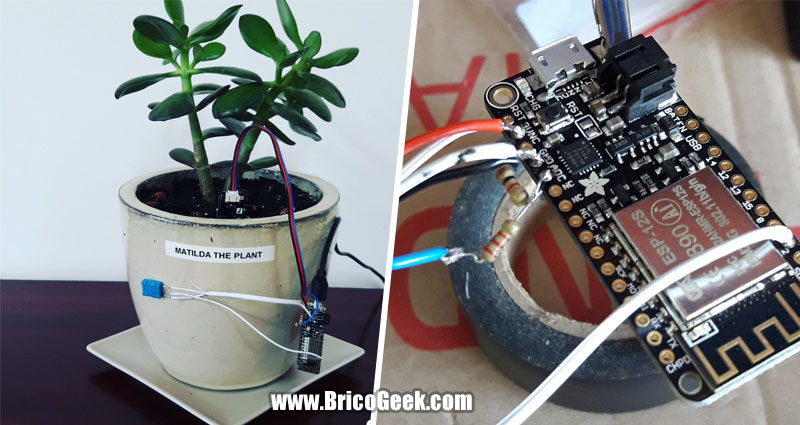 Matilda The Plant: Planta conectada con ESP8266 a Thingspeak